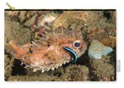 Burrfish And Cleaner Goby Carry-all Pouch