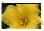 Burst Of Yellow Carry-all Pouch