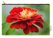 Bursts Of Color Carry-all Pouch