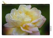Buttercream Blush Carry-all Pouch