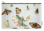 Butterflies Moths And Other Insects With A Sprig Of Apple Blossom Carry-all Pouch