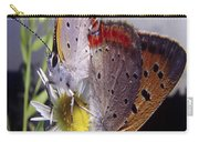 Butterfly 002 Carry-all Pouch