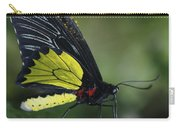 Butterfly 029 Carry-all Pouch
