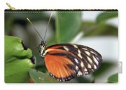 Key West Butterfly 2 Carry-all Pouch