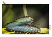 Butterfly 21 Carry-all Pouch