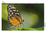Butterfly Profile Carry-all Pouch