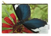 Butterfly Sara Longwing II Carry-all Pouch