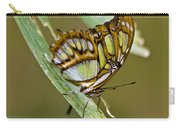 Butterfly Siproeta Stelenes Carry-all Pouch