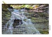 Butternut Falls Carry-all Pouch