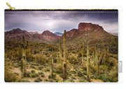 Cactus Canyon  Carry-all Pouch