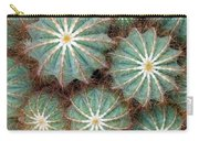 Cactus Family 2 Carry-all Pouch