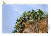 Cactus On A Cliff Carry-all Pouch