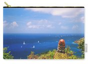 Cactus Overlooking Ocean Carry-all Pouch