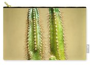 Cactus Towers Carry-all Pouch