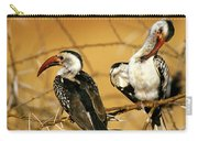 Calao A Bec Rouge Tockus Erythrorhynchus Carry-all Pouch