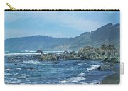 California Beaches 3 Carry-all Pouch
