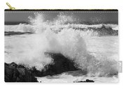 California Pacific Coast Carry-all Pouch