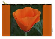 California Poppy Spectacular Carry-all Pouch