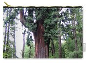 California Redwoods 6 Carry-all Pouch
