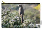 California Thrasher On Rosemary Carry-all Pouch