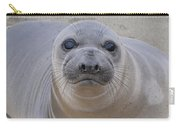 Cambria Baby Seal Carry-all Pouch