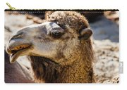 Camel Loose Lip Carry-all Pouch
