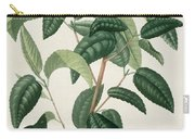 Camellia Thea Carry-all Pouch