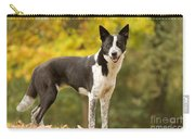Canaan Dog Carry-all Pouch