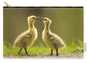 Canada Goose Babies Carry-all Pouch