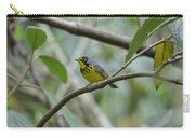 Canada Warbler Carry-all Pouch