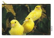 Canari Jaune Carry-all Pouch
