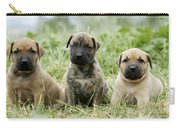 Canary Dog Puppies Carry-all Pouch
