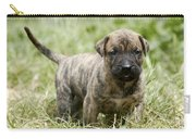 Canary Dog Puppy Carry-all Pouch