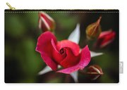 Candy Cane Roses Carry-all Pouch