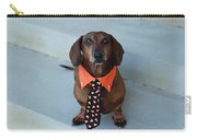 Candy Corn Tie Carry-all Pouch
