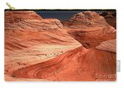 Candyland Canyons Carry-all Pouch