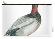 Canvasback Duck  Carry-all Pouch by Anonymous