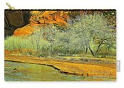 Canyon De Chelly - Spring I Carry-all Pouch