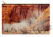 Canyon De Chelly - Spring II Carry-all Pouch