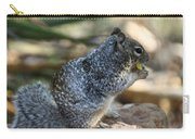 Canyon Squirrel Carry-all Pouch