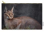 Caracal Carry-all Pouch