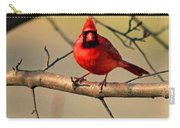 Cardinal Beauty Carry-all Pouch