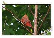 Cardinal Bird Baby Carry-all Pouch
