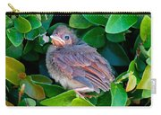 Cardinal Chick Carry-all Pouch