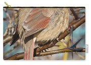 Cardinal Female Carry-all Pouch