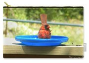 Cardinal Frisbee Carry-all Pouch