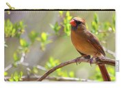Cardinal In Spring Carry-all Pouch