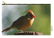 Cardinal Light Carry-all Pouch