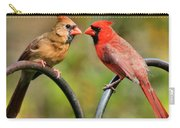 Cardinal Love Carry-all Pouch