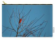 Cardinal Morning Carry-all Pouch